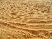 Arabian Desert Detail Royalty Free Stock Photo