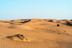 Arabian desert dune background on blue sky Royalty Free Stock Image