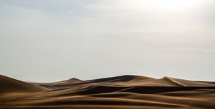 Free Arabian Desert Dune Lines With Shadows Background Royalty Free Stock Photography - 99779337