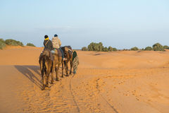 The arabian guide with couple of tourist in Sahara desert Royalty Free Stock Images