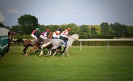 Arabian horse racing sluzewiec warsaw Stock Photo