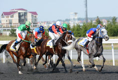Arabian horses at the races Stock Images