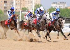 Arabian horses at the races. Arabian horses in motion at the races on hippodrome Royalty Free Stock Photos