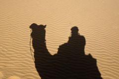 Arabian Lawrence. Shadow of camel and rider on desert Royalty Free Stock Photo