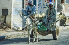 Arabian men ride his donkey chariot Stock Photos