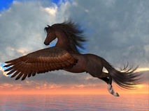 Bay Pegasus Horse. An Arabian Pegasus horse flies over the ocean with powerful wing beats on his way to his destination Royalty Free Stock Photos