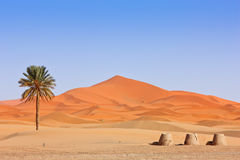 Arabian Sand Dunes and fountain Royalty Free Stock Photo
