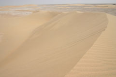 Arabian sandstorm. A sandstorm obscures the dunes in southern Qatar, on the edge of the great Rub al Khali, or Empty Quarter. The flat sabkha or salt marshes royalty free stock photography