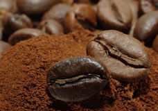 Arabic coffee beans. Coffee beans and ground coffee. Macro shot of coffee beans. Two arabic coffee beans on ground coffee texture Royalty Free Stock Photography
