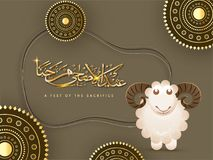 Arabic golden calligraphic text Eid-Ul-Adha, Islamic festival of. Sacrifice with sheep and golden mandala patterns on brown background Stock Images