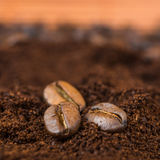 Arabic ground roasting coffee and coffee beans Royalty Free Stock Photography