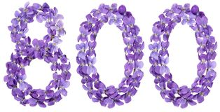 Arabic numeral 800, eight hundred, from flowers of viola, isolat Stock Photo
