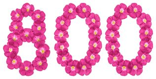 Arabic numeral 800, eight hundred, from pink flowers of flax, isolated on white background.