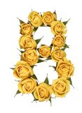 Arabic numeral 8, eight, from yellow flowers of rose, isolated o. N white background stock images