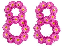 Arabic numeral 88, eighty eight, from flowers of chrysanthemum,. Isolated on white background Stock Image