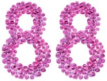 Arabic numeral 88, eighty eight, from flowers of lilac, isolated. On white background royalty free stock images