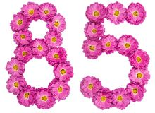 Arabic numeral 85, eighty five, from flowers of chrysanthemum, i. Solated on white background Stock Photo