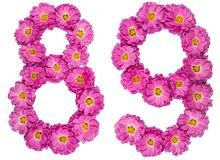 Arabic numeral 89, eighty nine, from flowers of chrysanthemum, i. Solated on white background Royalty Free Stock Image