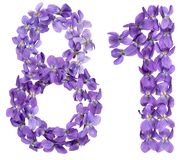 Arabic numeral 81, eighty one, from flowers of viola, isolated o. N white background Stock Images