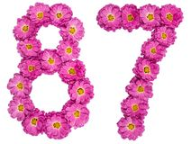 Arabic numeral 87, eighty seven, from flowers of chrysanthemum,. Isolated on white background Royalty Free Stock Photos
