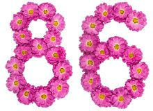 Arabic numeral 86, eighty six, from flowers of chrysanthemum, is. Olated on white background Stock Image