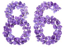 Arabic numeral 86, eighty six, from flowers of viola, isolated o. N white background Stock Photography