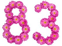 Arabic numeral 83, eighty three, from flowers of chrysanthemum,. Isolated on white background Stock Image