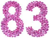 Arabic numeral 83, eighty three, from flowers of lilac, isolated. On white background stock images