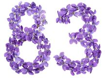 Arabic numeral 83, eighty three, from flowers of viola, isolated. On white background Stock Image