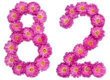 Arabic numeral 82, eighty two, from flowers of chrysanthemum, is. Olated on white background Royalty Free Stock Photography