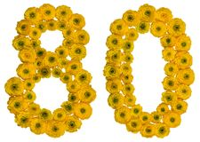 Arabic numeral 80, eighty, from yellow flowers of buttercup, iso. Lated on white background Royalty Free Stock Photo