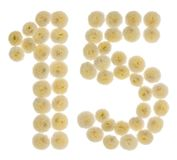 Arabic numeral 15, fifteen, from cream flowers of chrysanthemum,. Isolated on white background Stock Image