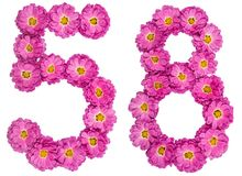 Arabic numeral 58, fifty eight, from flowers of chrysanthemum, i. Solated on white background Royalty Free Stock Photography