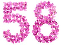 Arabic numeral 58, fifty eight, from flowers of viola, isolated. On white background Royalty Free Stock Photos