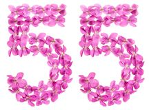 Arabic numeral 55, fifty five, from flowers of viola, isolated o. N white background Stock Images