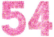 Arabic numeral 54, fifty four, from pink forget-me-not flowers,. Isolated on white background Royalty Free Stock Images