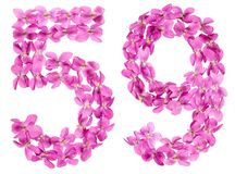 Arabic numeral 59, fifty nine, from flowers of viola, isolated o. N white background Royalty Free Stock Images