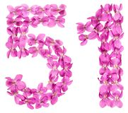 Arabic numeral 51, fifty one, from flowers of viola, isolated on. White background Stock Images