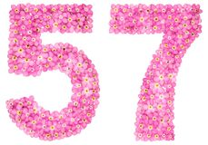 Arabic numeral 57, fifty seven, from pink forget-me-not flowers,. Isolated on white background Royalty Free Stock Photo