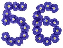 Arabic numeral 56, fifty six, from blue flowers of flax, isolate Stock Image