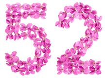 Arabic numeral 52, fifty two, from flowers of viola, isolated on. White background Royalty Free Stock Photography