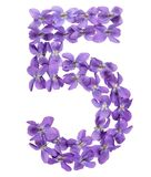 Arabic numeral 5, five, from flowers of viola, isolated on white. Background Stock Photo