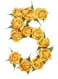 Arabic numeral 5, five, from yellow flowers of rose, isolated on. White background stock images