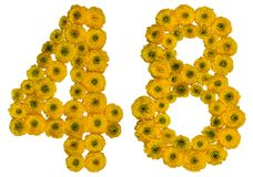 Arabic numeral 48, forty eight, from yellow flowers of buttercup. Isolated on white background stock photo