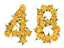 Arabic numeral 48, forty eight, from yellow flowers of rose, iso. Lated on white background royalty free stock photography