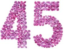 Arabic numeral 45, forty five, from flowers of lilac, isolated o. N white background royalty free stock photo