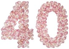 Arabic numeral 40, forty, from flowers of hydrangea, isolated on white background.  stock photography