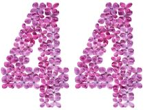 Arabic numeral 44, forty four, from flowers of lilac, isolated o. N white background stock photos