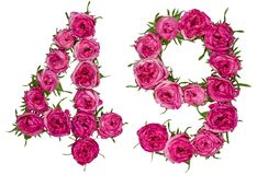 Arabic numeral 49, forty nine, from red flowers of rose, isolate. D on white background Royalty Free Stock Photography