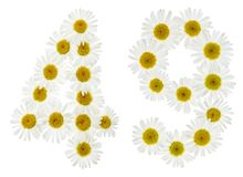 Arabic numeral 49, forty nine, from white flowers of chamomile,. Isolated on white background Stock Photo